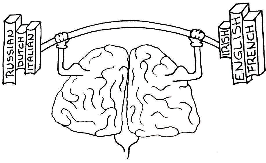 Photo of Being Bilingual Changes Your Brain Structure